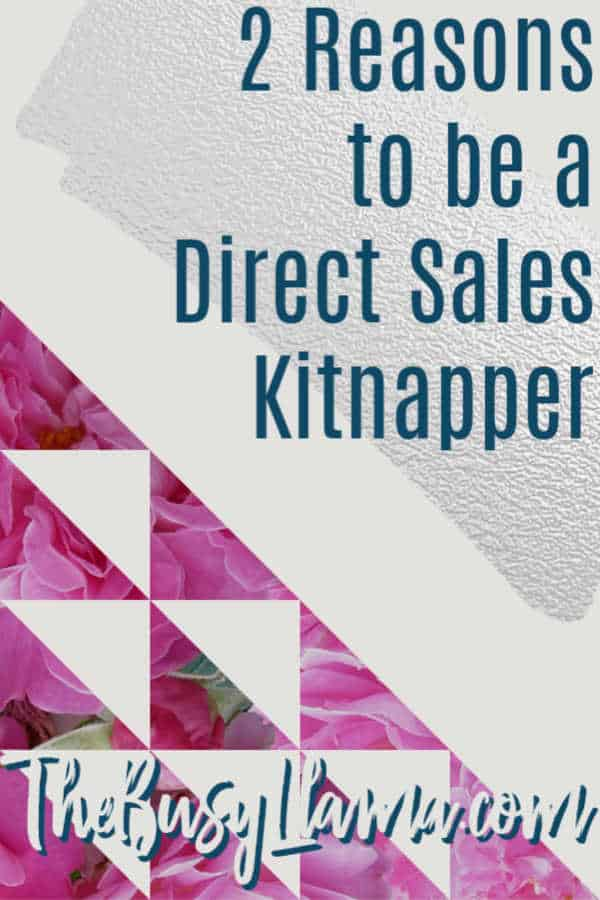 What is a direct sales kitnapper? Check out this post to find out and maybe do a little kitnapping of your own. Want to learn even more? Subscribe!