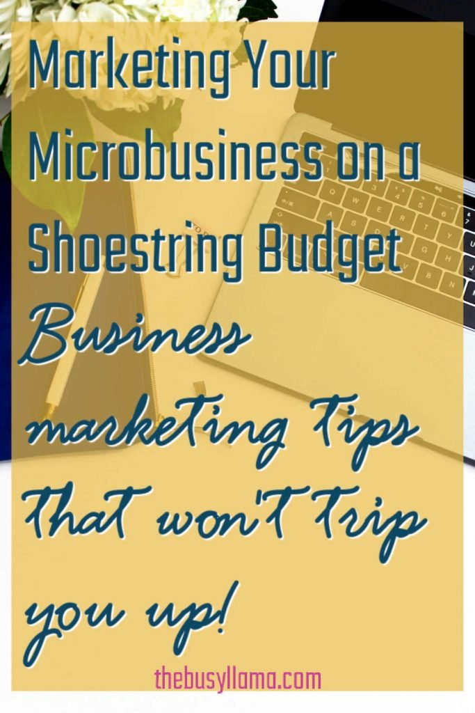 Run a one-woman business? Perhaps you may need to give Windy Lawson's Marketing Your Microbusiness on a Shoestring Budget a peek? Does she have the business marketing tips you have been missing? Find out!